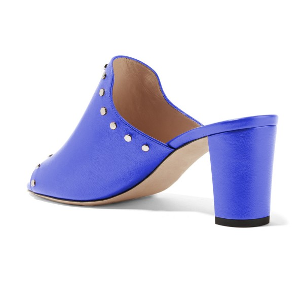 Women's Blue Open Toe with Metal Mule chunky Heel Sandals image 3