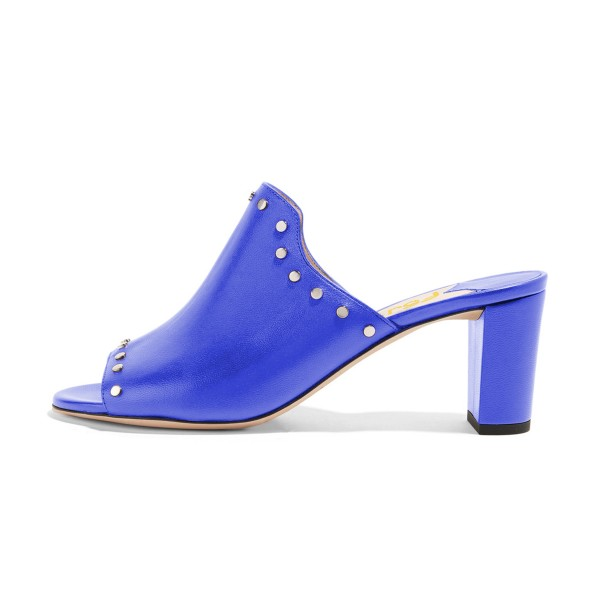 Women's Blue Open Toe with Metal Mule chunky Heel Sandals image 4