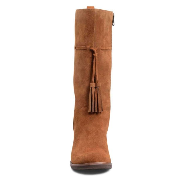 Brown Suede Boots Tassel Chunky Heel Mid Calf Boots  image 4