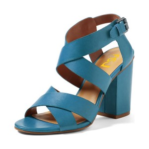 Women's Blue Open Toe Buckle Chunky Heel Sandals