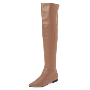 Apricot Flat Thigh High Boots Pointy Toe Comfy Shoes