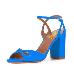 Women's Blue Heels Ankle Strap Chunky Heel Sandals Shoes