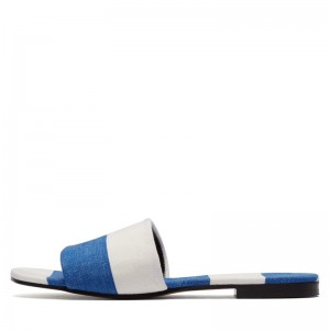 Blue and White Women's Slide Sandals