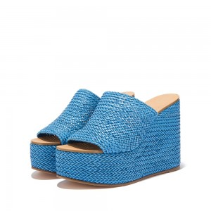 Blue Woven Platform Wedge Heels Mule Sandals