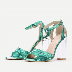 Green Floral Peep Toe Ankle Strap Clear Chunky Heel Sandals
