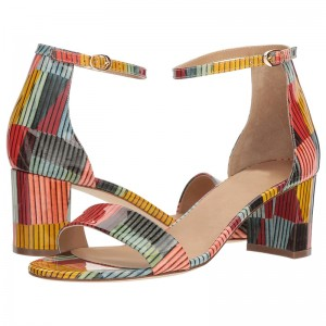 Multicolor Patent Leather Chunky Heel Ankle Strap Sandals