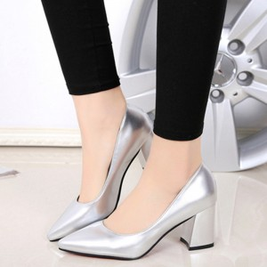 Women's Silver Pointy Toe Chunky Heels Pumps