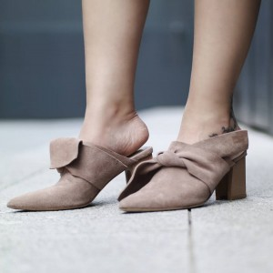 Brown Chunky Heels Pointed Toe  Mule Choes