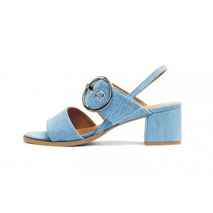 Women's Light Blue Open Toe Block Heel Sandals Slingback Heels