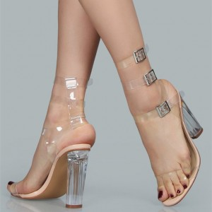 Women's Open Toe Ankle Straps Chunky Clear Heels Sandals