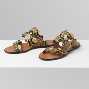 Yellow and Black Python Women's Slide Sandals