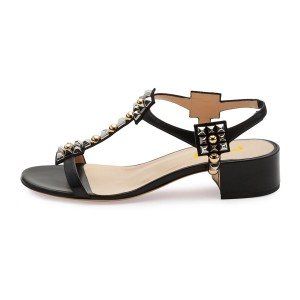 Black T Strap Sandals Open Toe Chunky Heels Sandals