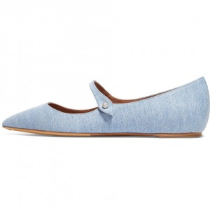 Light Blue Jean Flat Mary Jane Shoes