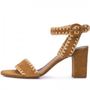 Ginger Suede Ankle Strap Sandals Open Toe Chunky Heel Sandals