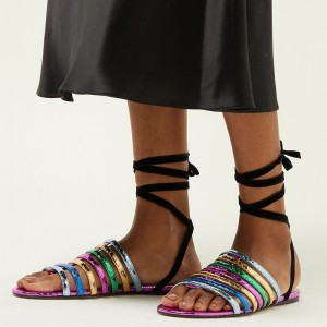 Multicolor Straps Ankle Strap Flat Sandals