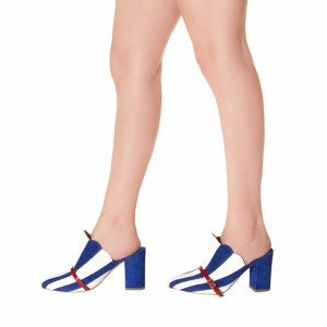 Royal Blue Stripes Chunky Heel Sandals Round Toe Mule Summer Sandals